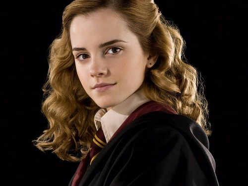 Hermione Granger wallpaper possibly containing a portrait titled Hermione Granger Wallpaper