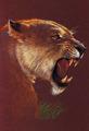 शेरनी