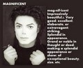 Magnificent Michael - michael-jackson photo