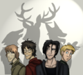 Marauders - harry-potter-vs-twilight photo