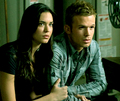 Meredith Sulez & Alaric Saltzman - vampire-diaries-books photo