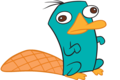 Perry the platypus - perry-the-platypus photo