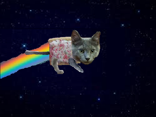 Nyan Cat karatasi la kupamba ukuta possibly containing a tom, a kitten, and a cat titled Real Life Nyan Cat