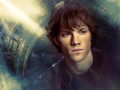 Sam ♥ - sam-winchester wallpaper