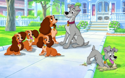 Lady, Tramp, Scamp and sisters