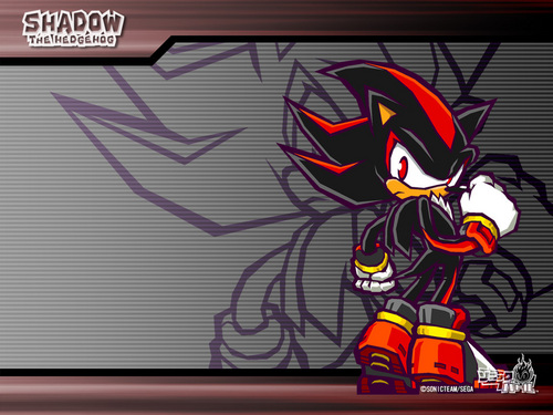 Shadow The Hedgehog 바탕화면