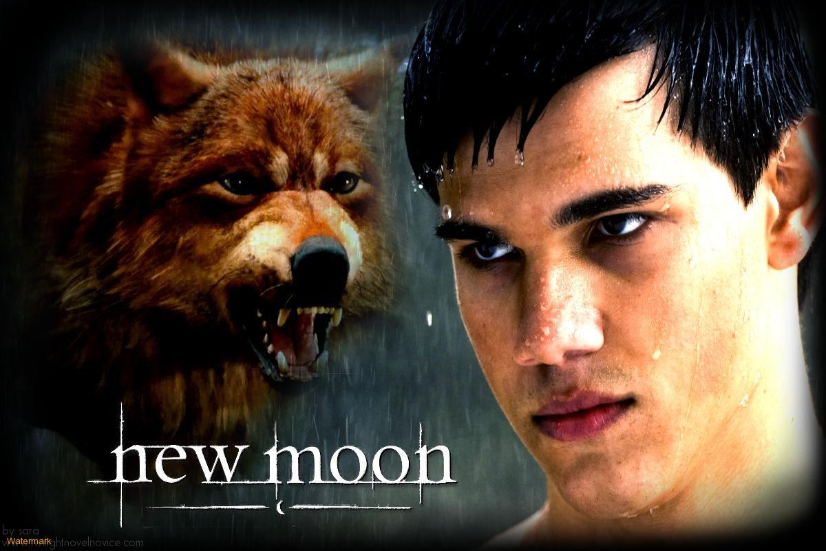 jacob black - Jacob Black Photo (24421726) - Fanpop