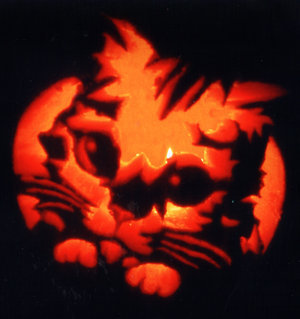 Puss in Boots fondo de pantalla probably with a jack o' lantern titled puss