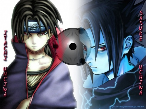 ♥The Brothers Of Destiny♥
