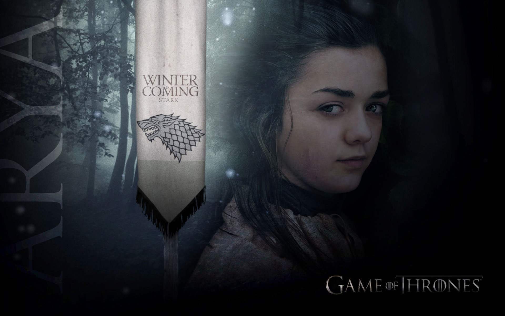 house stark images arya stark wallpaper hd wallpaper and background