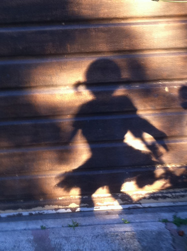 Bandit Shadow!