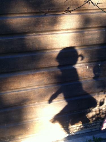 Bandit Shadow!
