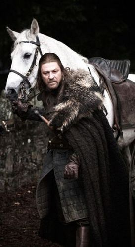 House Stark wallpaper containing a lippizan, a horse trail, and a horse wrangler entitled Eddard Stark
