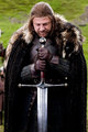 Eddard Stark with Ice - house-stark photo