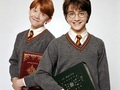 Harry, Ron and Hermione দেওয়ালপত্র