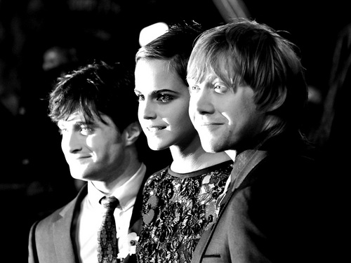 Harry, Ron and Hermione fondo de pantalla