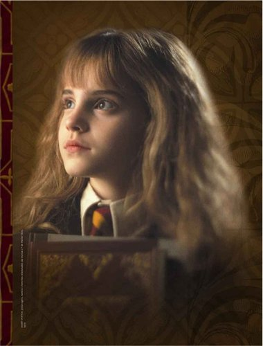 Hermione Granger wolpeyper probably containing a sign titled Hermione Sorcerer's Stone