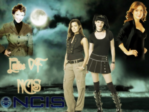 Ladies of ncis