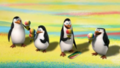 Penguins in snowcone land!!! - penguins-of-madagascar photo