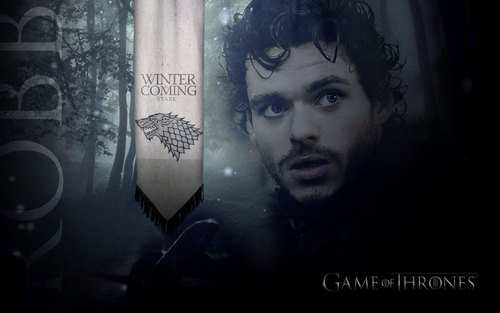 Robb Stark wallpaper - house-stark Wallpaper