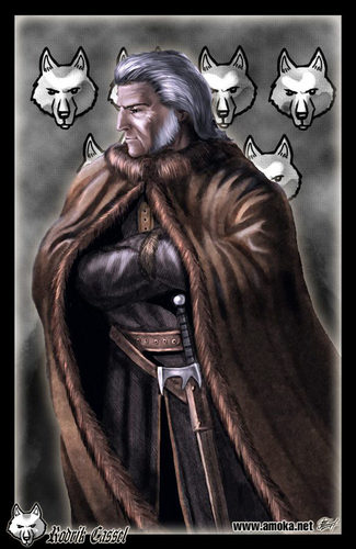 House Stark wallpaper possibly with a fur coat titled Rodrik Cassel by Amoka