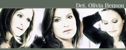 Law and Order SVU wallpaper containing a portrait called SVU banner contest