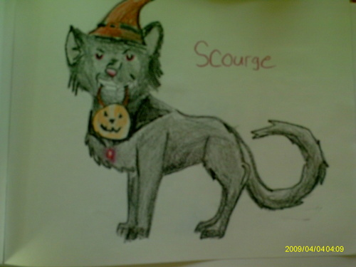 Scourge is trick-or-treating