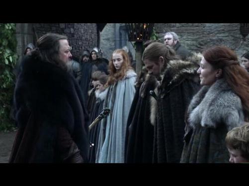 House Stark wallpaper containing a fur coat called Stark family