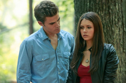 Stefan & Elena - the-vampire-diaries-couples Photo