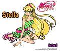 Stella School