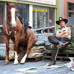 The Walking Dead Hintergrund containing a lippizan and a horse wrangler called TWD - Behind the Scenes