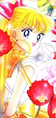 Venus Manga