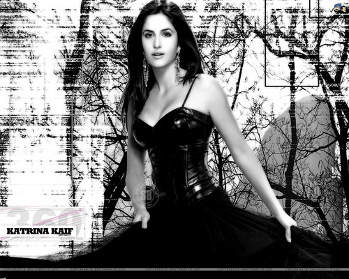 Katrina Kaif wallpaper with a dinner dress titled katrina