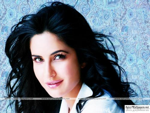 Katrina Kaif wallpaper containing a portrait called katrina