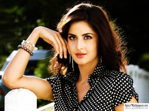Katrina Kaif wallpaper with a portrait called katrina