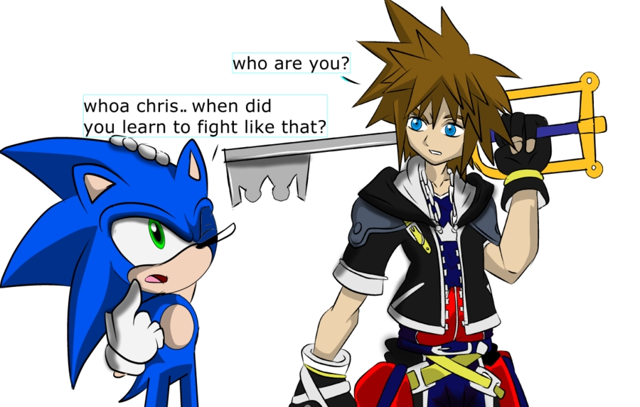 does sora from kingdom hearts look like chris from sonic x sonic