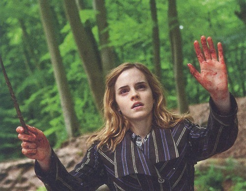 You Like Hermione Best When Poll Results Harry Potter
