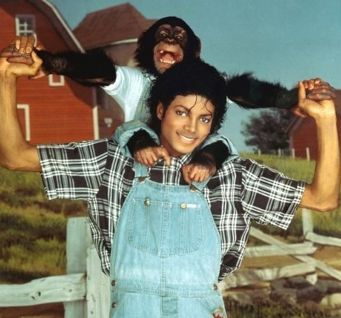 What's Michael's monkey name?