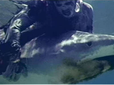 "In what movie will آپ see the famous ""zombie vs. shark"" scene?"