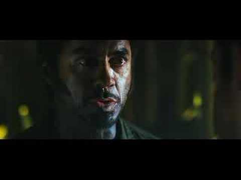 In Tropic Thunder,Robert Downey Jr's performance as the lost Australian actor.