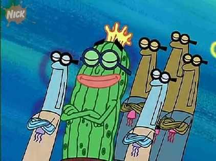 what was kevin the sea cucumber was aperered