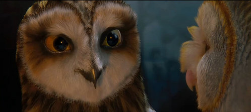Who is this owl? (next to Soren)
