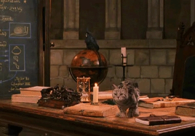 What Harry Potter Professor can turn into a cat?