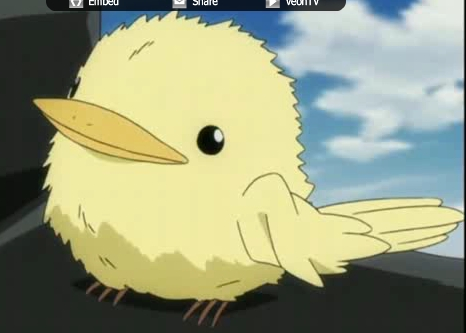 Who was the person (who was hinted) to name Hibari's bird,Hibird?