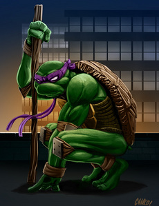 Which turtle wears a purple mask?