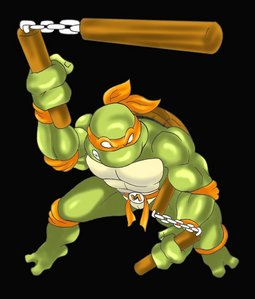 Ninja turtle michelangelo weapon - photo#3