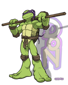 What weapon does Donatello use?