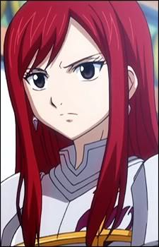 how many armours does erza have?