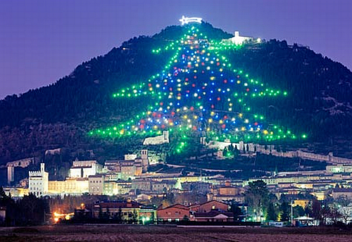 where is the place christmas tree on mountain slope in ?