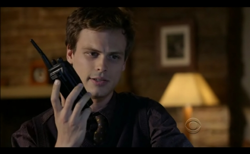 """In """"Into the Woods"""" what part of a previous victims family helped Reid with the geographical profile?"""